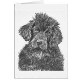 Newfoundland Dog Puppy Card