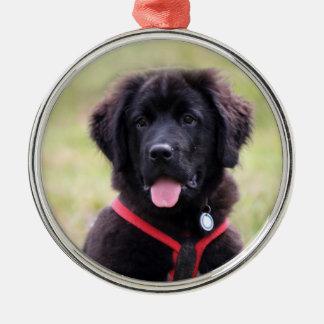 Newfoundland dog puppy cute beautiful photo, gift metal ornament