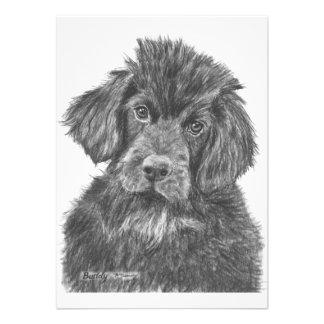 Newfoundland Dog Puppy Custom Invitations