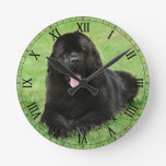 Newfoundland dog round clock