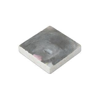 Newfoundland Dog Stone Magnet