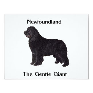Newfoundland Dog The Gentle Giant Card