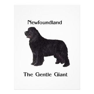 Newfoundland Dog The Gentle Giant Flyer