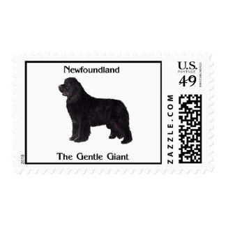 Newfoundland Dog The Gentle Giant Stamps