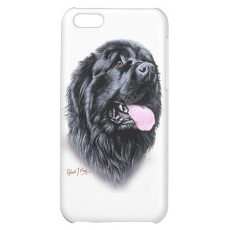 Newfoundland Cover For iPhone 5C