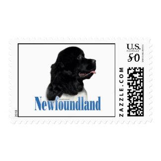 Newfoundland (landseer) Name Postage