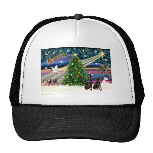 Newfoundland Minaiture Pinschers (two) Hats