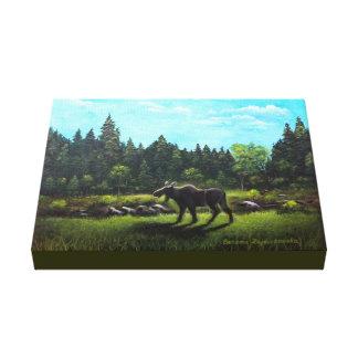 Newfoundland Moose Canvas Print