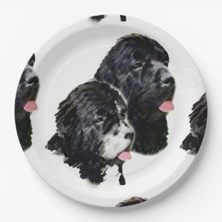 newfoundland painting.png paper plate