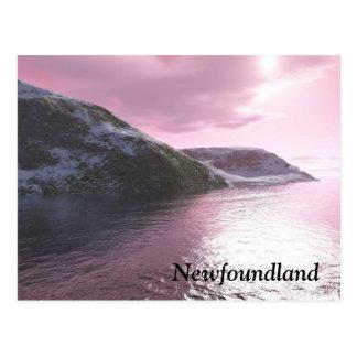 Newfoundland Pink Sunrise Postcard by Tamara Ward