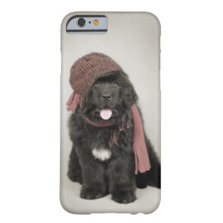 Newfoundland puppy barely there iPhone 6 case