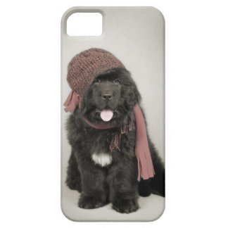 Newfoundland puppy iPhone 5 case