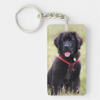 Newfoundland puppy dog newfie beautiful photo acrylic key chain
