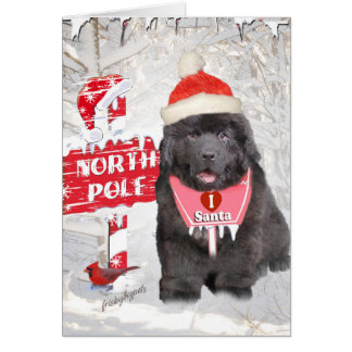 Newfoundland Puppy Loves Santa Cards