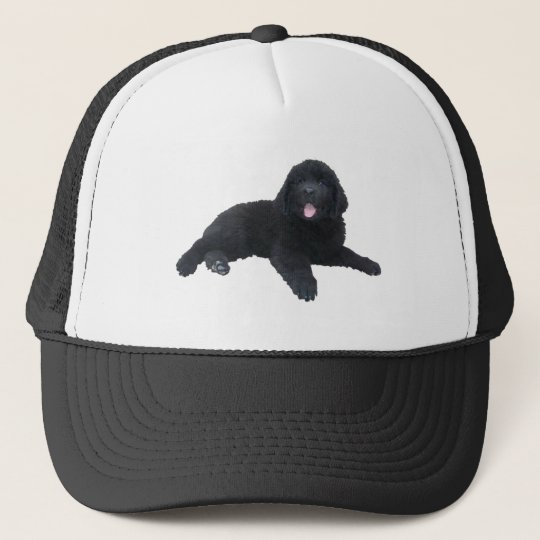 Newfoundland Puppy Trucker Hat