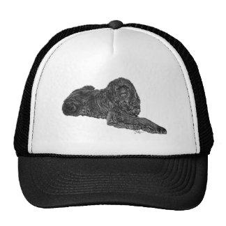newfoundland trucker hat