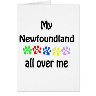 Newfoundland Walks Design Card