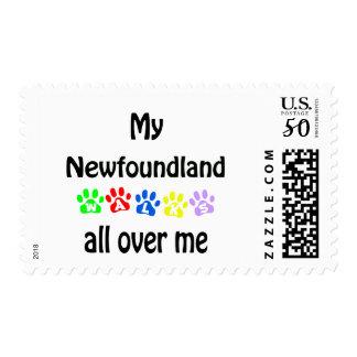 Newfoundland Walks Design Postage