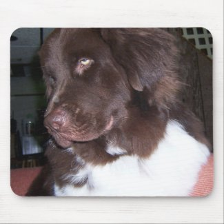 Newfy girl mouse pad