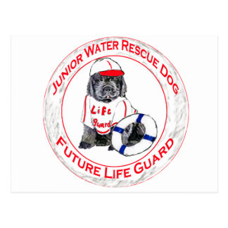 Newfy Puppy Lifeguard Post Cards