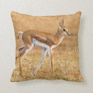 Newly Born Springbok (Antidorcas Marsupialis) Throw Pillow