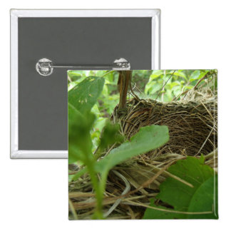 Newly Built but Empty Bird Nest in a Mulberry Tree 2 Inch Square Button