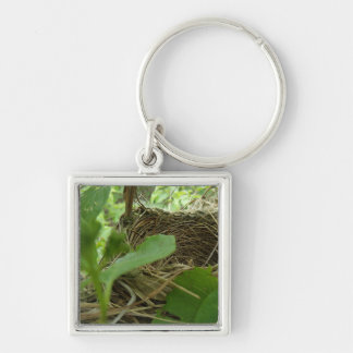 Newly Built but Empty Bird Nest in a Mulberry Tree Keychain