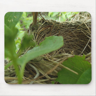 Newly Built but Empty Bird Nest in a Mulberry Tree Mouse Pad