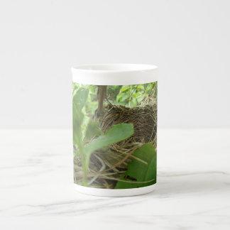 Newly Built but Empty Bird Nest in a Mulberry Tree Bone China Mug