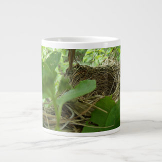 Newly Built but Empty Bird Nest in a Mulberry Tree 20 Oz Large Ceramic Coffee Mug