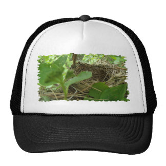 Newly Built but Empty Bird Nest in a Mulberry Tree Trucker Hat