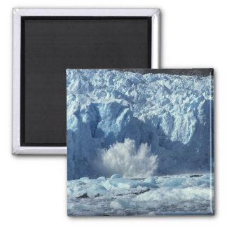 Newly-calved iceberg splashing into chilly magnet