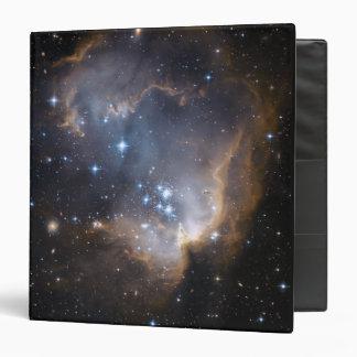 Newly formed stars binder