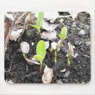 Newly Sprouted Seedlings Mouse Pad