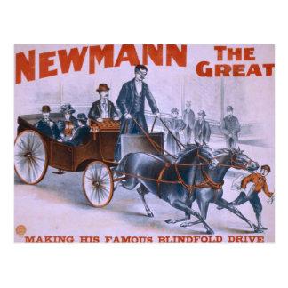Newmann Postcard