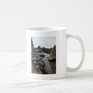 Newport Beach Muscles at Low Tide Coffee Mug
