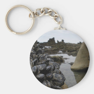 Newport Beach Muscles at Low Tide Keychain