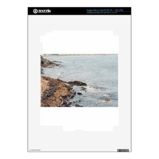 Newport iPad 3 Decals