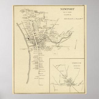 Newport, Sullivan Co Impresiones