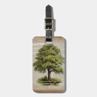 newspaper french botanical art vintage oak tree luggage tag