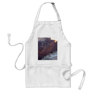 Newspaper Rock At Petrified Forest National Park Apron