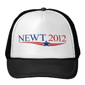 Newt 2012 Swag Trucker Hat