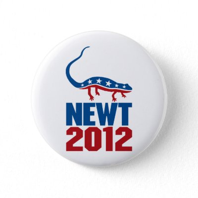 newt gingrich wife. Newt Gingrich will run for