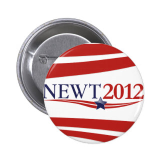 Newt Gingrich 2012 Pin