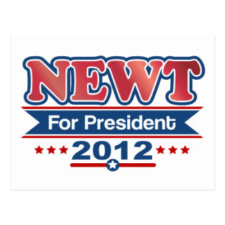 NEWT Gingrich 2012 Post Card