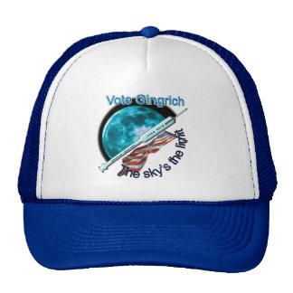 Newt Gingrich - el límite del cielo Gorros Bordados