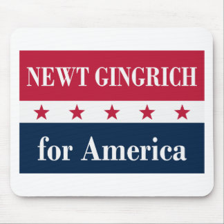 Newt Gingrich for America Mousepad