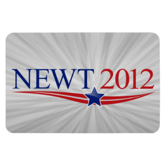 Newt Gingrich for President 2012 Magnets