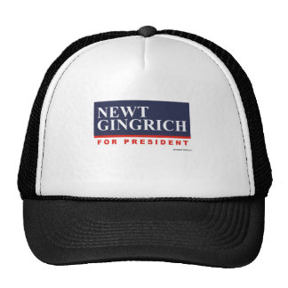 Newt Gingrich for President (2) Hats