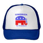 Newt Gingrich Gorros Bordados